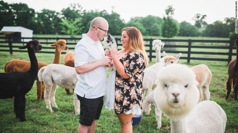 image of a couple photobombed by an alpaca