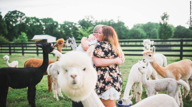 image of a couple photobombed by a alpaca