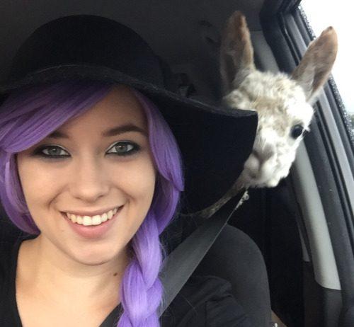 Image of girl with Alpaca photobomb